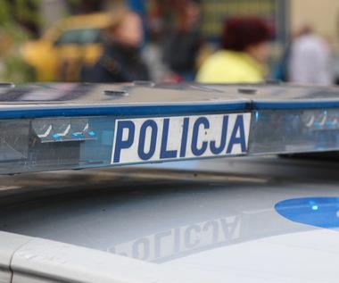 Wypadek samochodowy w Gdańsku. Trwa reanimacja 6-letniego dziecka