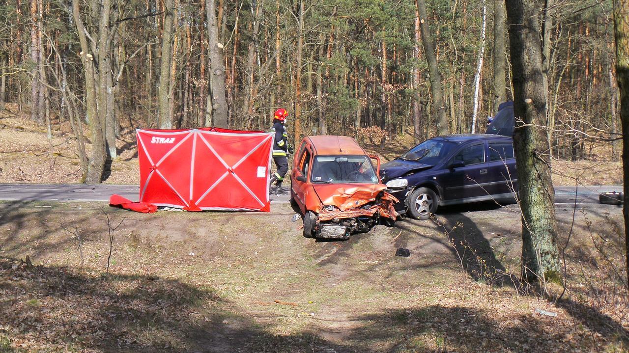 Śmiertelny wypadek na drodze do Nieporętu. Trasa jest zablokowana